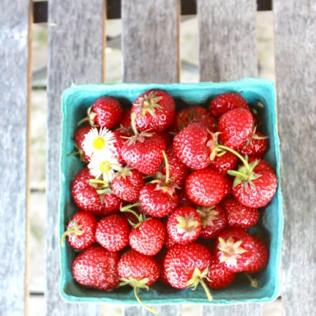 fresh picked strawberries, whole, golden earthworm organic farm