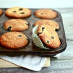 blueberry muffin tin