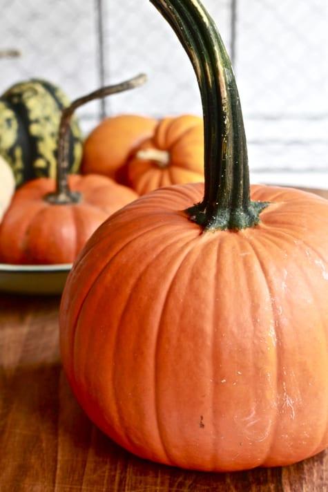 Halloween Pumpkin / The Clever Carrot