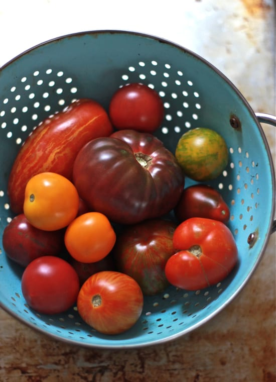 heirloom tomatoes | The Clever Carrot