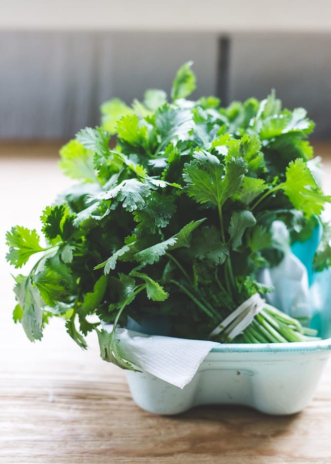 how to store cilantro | The Clever Carrot
