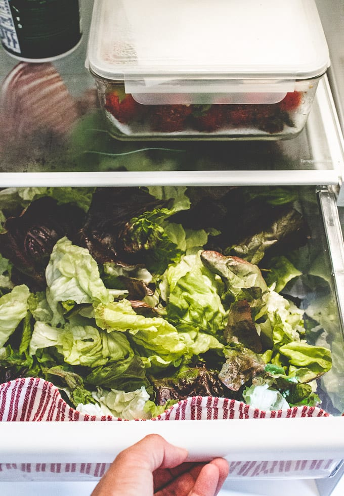 how to store salad in the fridge | The Clever Carrot