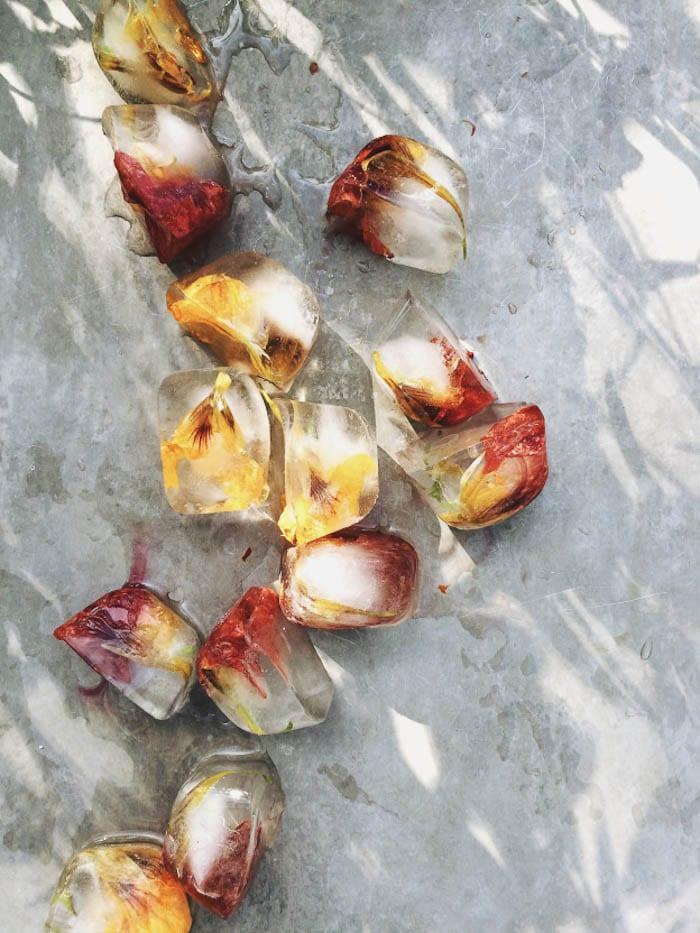 Edible Flower Ice Cubes- Holly & Flora