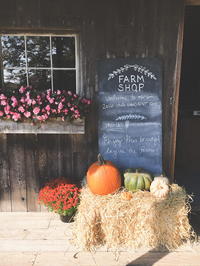 a farm tour + butternut squash risotto. | theclevercarrot.com