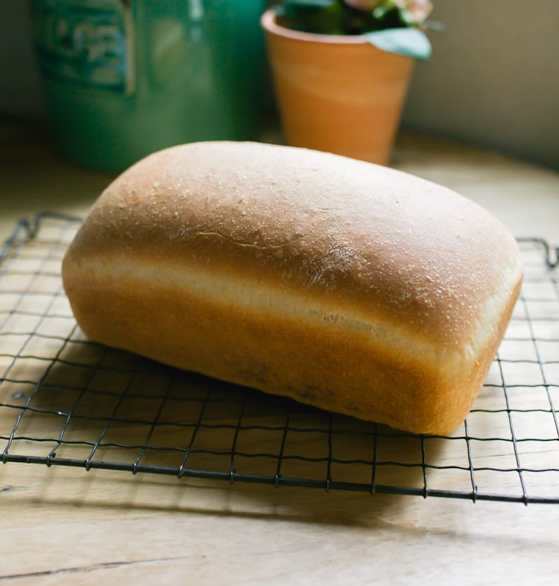 Sourdough Sandwich Bread | theclevercarrot.com