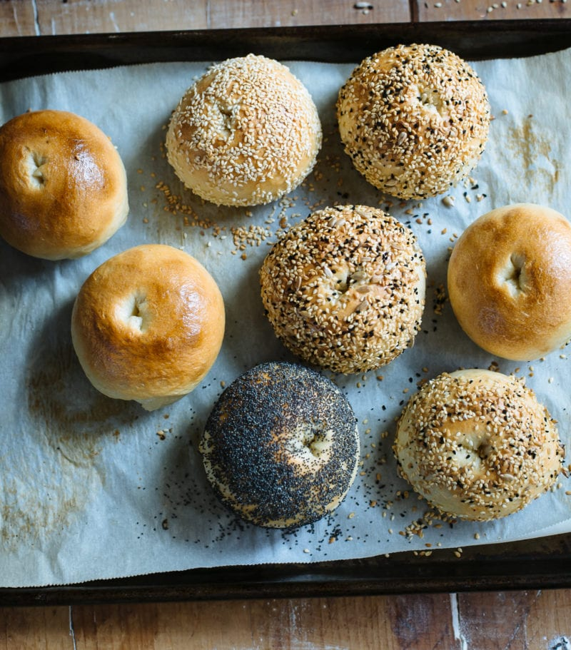 Tray of baked sourdough bagels