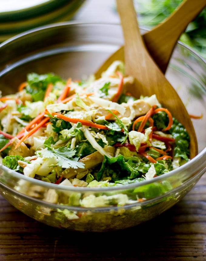 Bowl of shredded cabbage, carrots, sesame seeds, cilantro and dressing.